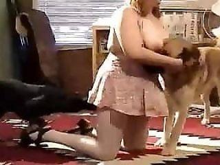 Zoo Porno
