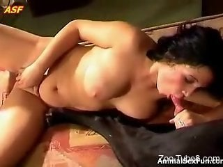 Curly brunette masturbates with a dog cock in her mouth