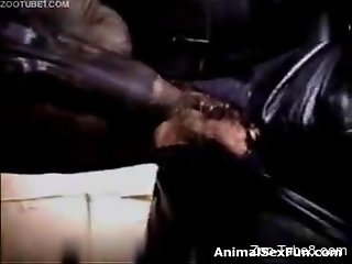 Leather-wearing mommy gets fucked by a pony