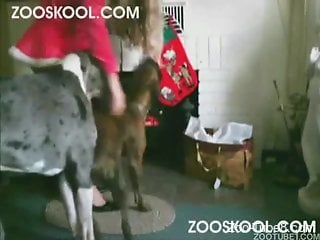 Sexy woman ass fucked by the dog in rough manners