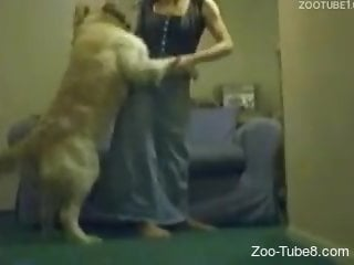 Dark-haired babe with a nice ass gets drilled by a dog