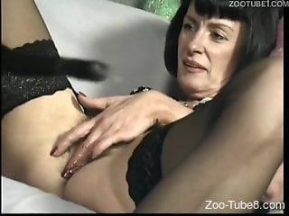 Brunette in stockings destroyed by a kinky dog