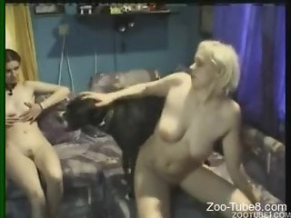 Hot women take turns fucking a well-endowed doggo